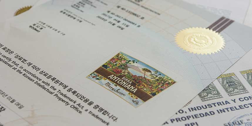 registrazione marchi ufficio veneto brevetti Padova